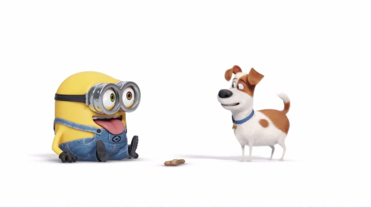 the secret life of pets 2016 review oficial viernes 15