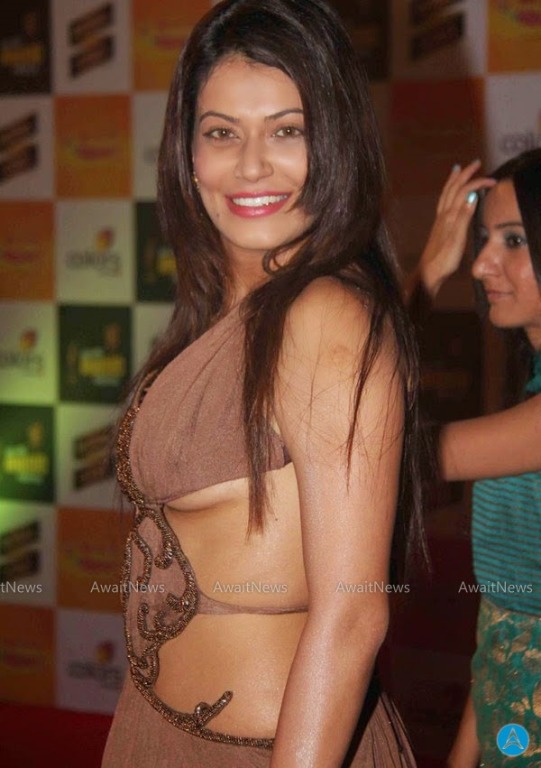 Bollywood Sexy Selebrety Pictures 6