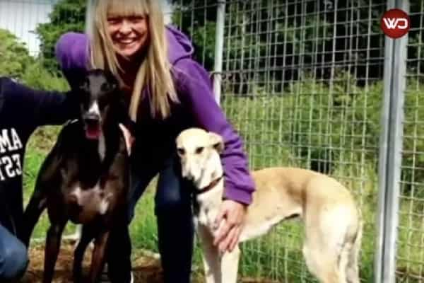 Pining For Family Members That Left Him, Dog In Kill-Shelter Cried As They Passed Him By