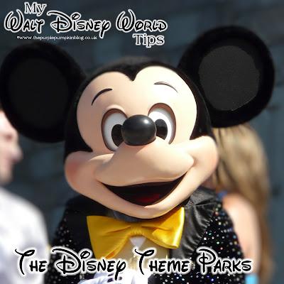 My Walt Disney World Tips – Disney Theme Parks