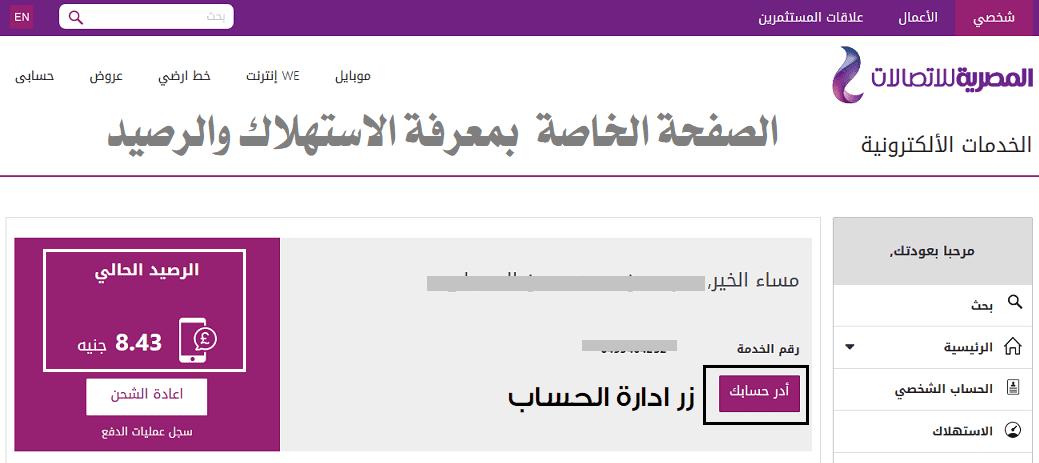 صفحة معرفة استهلاك النت we المنزلي والمتبقي من باقة النت