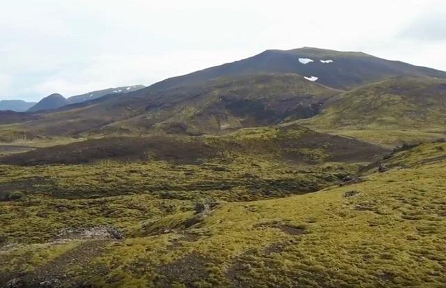 ciri khas bioma tundra