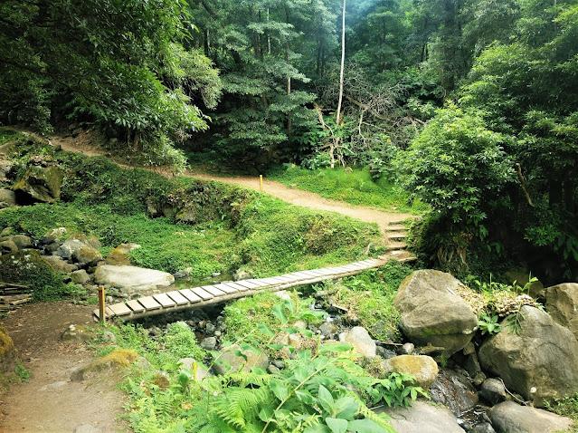 Camino al Salto do Prego (Azores)