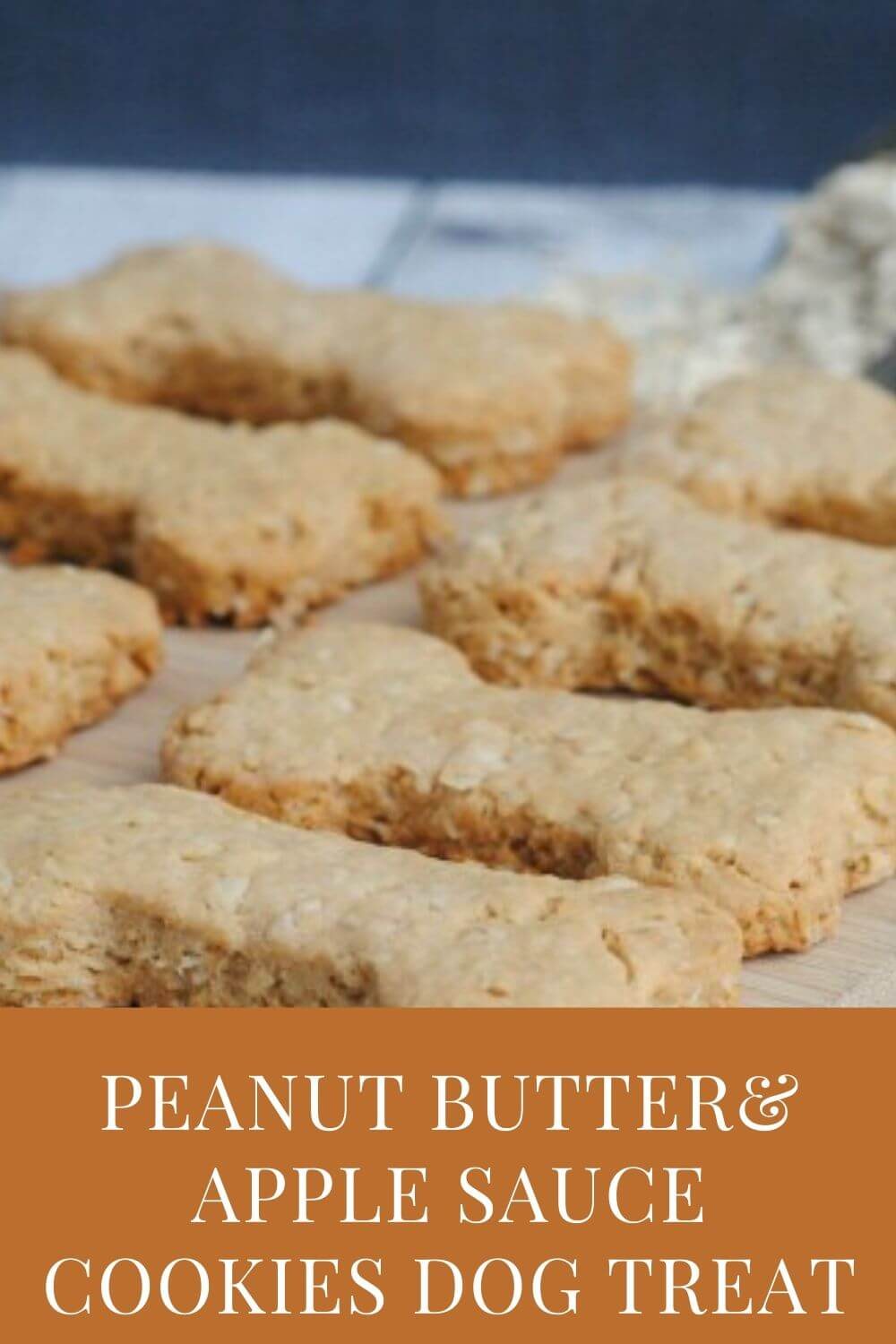 Peanut Butter and Apple Sauce Cookies