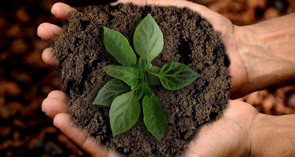 Menjaga Lingkungan Untuk Air Bersih di Masa Depan