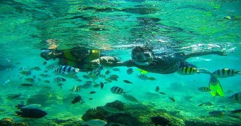 Taman laut Pulau Tidung
