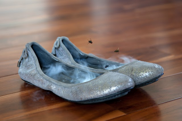 These Superb Tips Will Eliminate Shoe Odour Fast