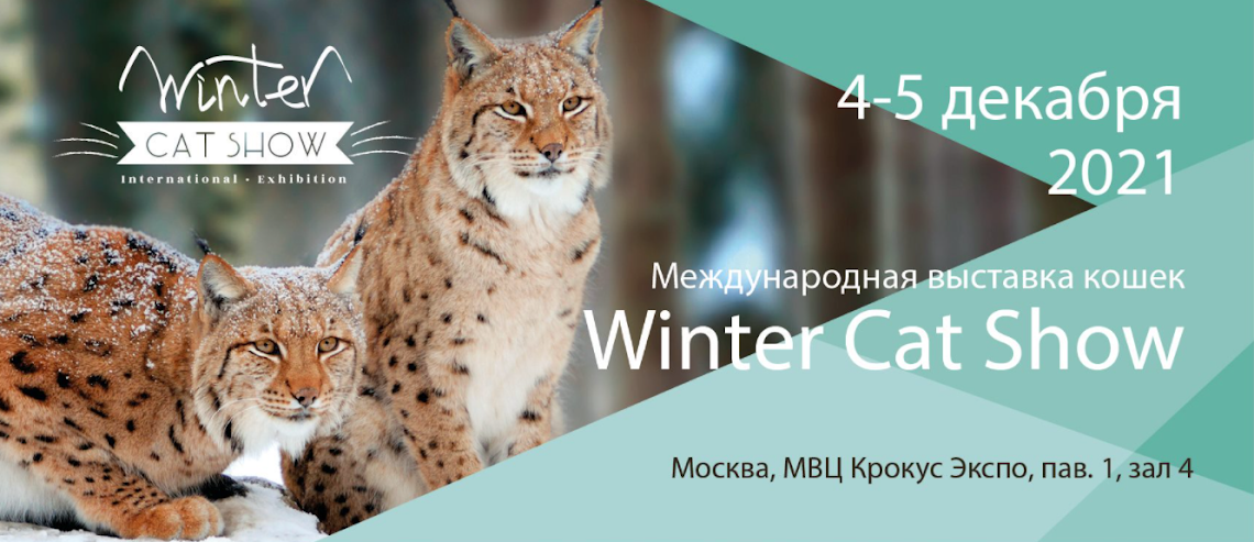 Зимнее шоу кошек в Крокус Сити холл