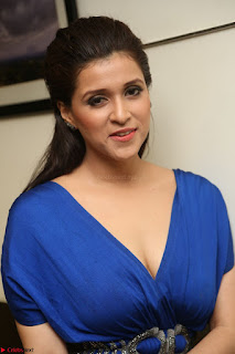Mannara Chopra in Short Blue Dress at Rogue Movie Teaser Launch 1st March 2017 085.JPG