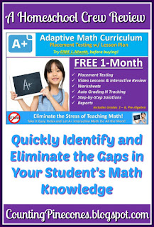 #hsreviews  #onlinemath #homeschoolmath #familymath