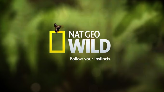 NatGeo Wild Central Europe - Eutelsat Frequency