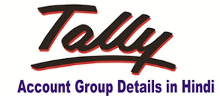 Tally Groups Details in Hindi with Example