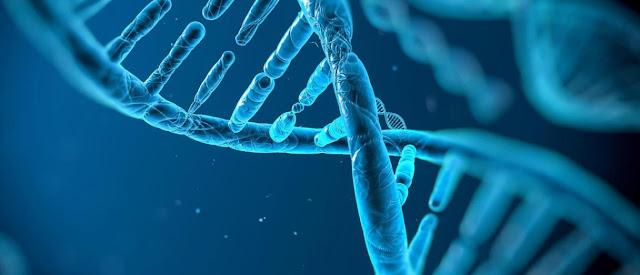 Genes y biologia