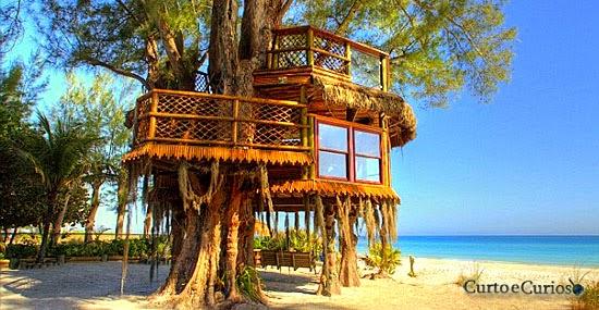 As Casas na Árvore mas bonitas que você já viu