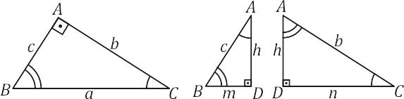Triângulo retângulo - relações métricas - semelhanças