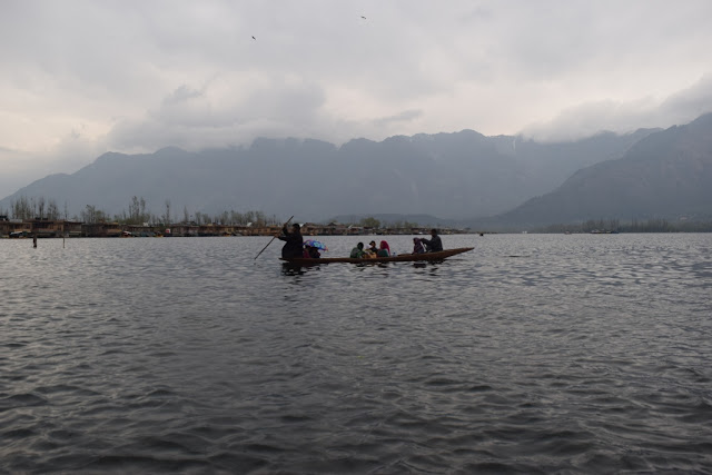 about Dal Lake