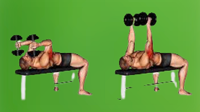 Lying Dumbbell striated muscle Extension