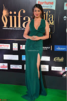 Laxmi Rai in a Deep neck Beautiful Green Gown Cute Actress Laxmi Rai ~  012.JPG