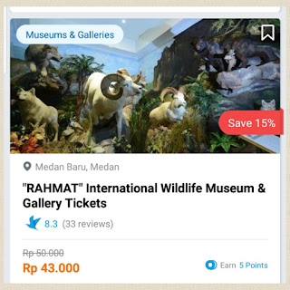 rahmat international wildlife museum gallery traveloka xperience