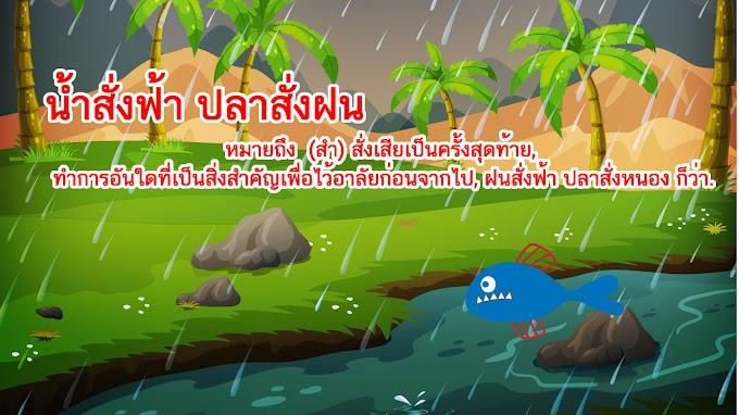 น้ำสั่งฟ้า ปลาสั่งฝน หมายถึงอะไร ?
