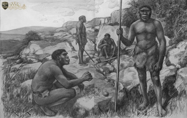 Penggolongan-Manusia-Purba-Homo Sapiens