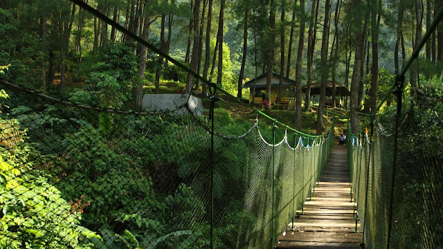 Jangan Takut ke Gunung Salak, Tempat-Tempat Indah Ini Bakal Bikin Kamu Takjub!