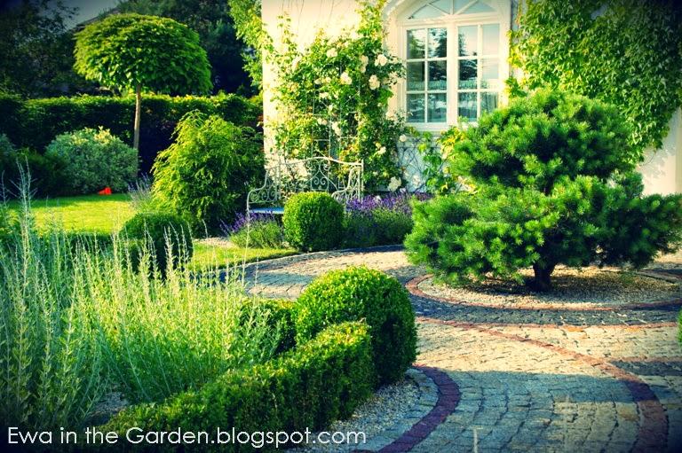 Gardens By Maria: Ewa In The Garden: 17 Photos Of Provençal Garden Designed