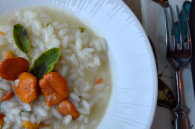 kanttarellirisotto, kanttarelli, sienet, kasvisruoka