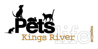 http://kingsriverlife.com/07/21/feral-paws-rescue-a-very-special-family/