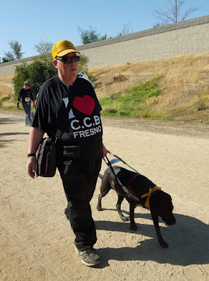 William, wearing a yellow hat, black T shirt walking down a sandy path with Leif the Black Lab guide dog in harness on his left side.