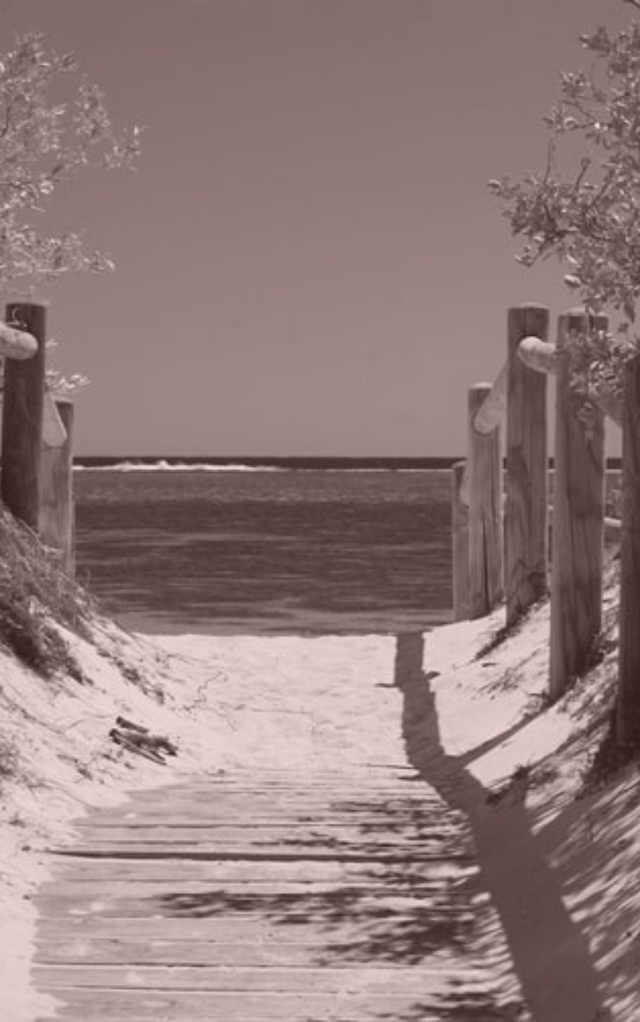 "H άχρονη παραλία...""βασισμένη"" σε πραγματικά γεγονότα"