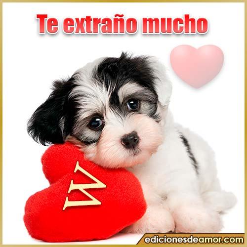 perrito con corazón W