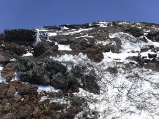 露出している登山道