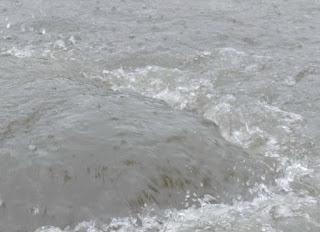 Foto cover De invloed van rioleringsonderhoud op droge voeten en volksgezondheid