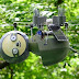 ماحول اور فطرت پر نظر رکھنے والا 'سلاتھ روبوٹ'   INDUS PRESS   INDUS NEWS