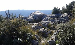 Punta de Barrina (Sostre comarcal Alt Camp)