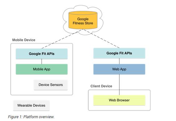 Mobile App Development: Google Fit: Lets Warm Up
