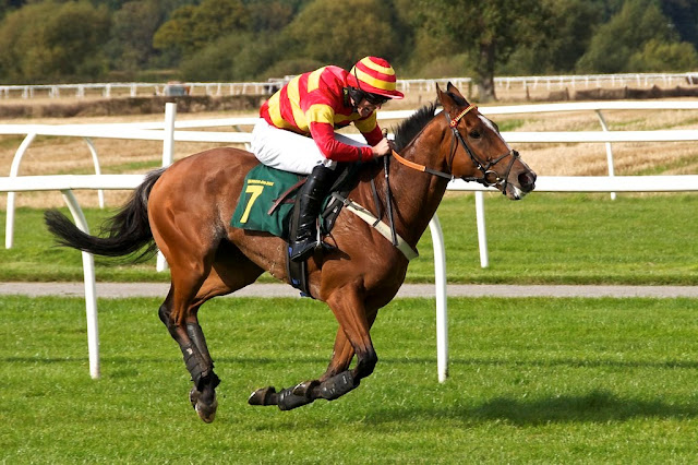 horse-wallpaper-riding