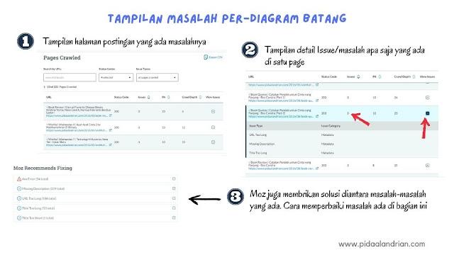 Detail issue/masalah perhalaman postingan blog