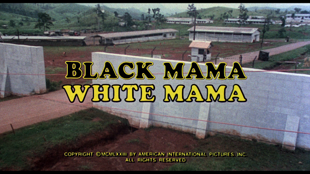 Black Mama, White Mama screenshot