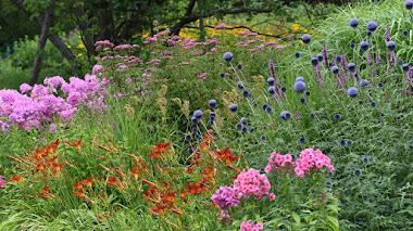 Hermannshof, un jardín de pruebas en Alemania en el que triunfa la plantación naturalista