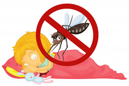 Cara Ampuh Mengusir Nyamuk Nakal