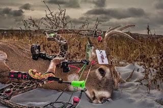deer tag
