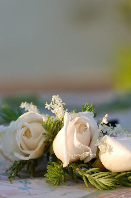 trandafiri albi de gradina pentru sotul meu