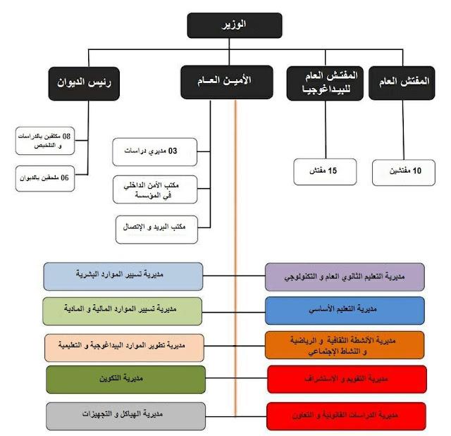 الهيكلة المركزية لوزارة التربية الوطنية