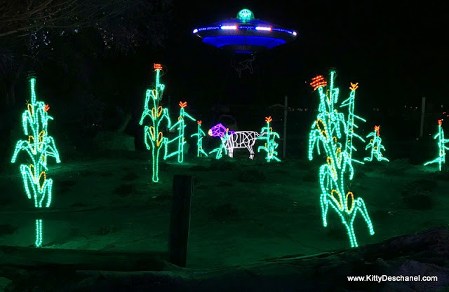 roswell aliens xmas light display