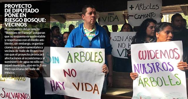 Poderoso Diputado del PRI podría convertir bosque protegido de Edomex en viviendas para ricos