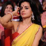 Ameesha Patel Yellow Saree hot hd wallpapers