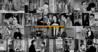 La orquídea negra (1958) The Black Orchid - Fotogramas