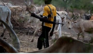 #Fulani Herdsmen Kidnap Farmer In Ondo, Kill OPC Member On Rescue Mission